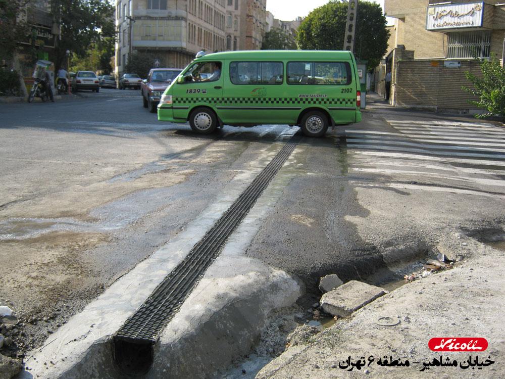 گریتینگ نیکول در خیابان مشاهیر تهران